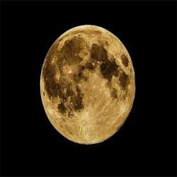 Halina Frąckowiak - Papierowy Księżyc