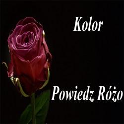 Kolor - Powiedz Różo